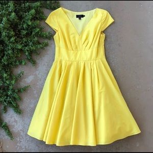 Ted Baker Yellow Fit & Flare A-line dress